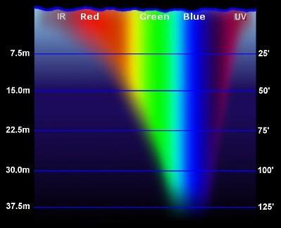 Jig Colors Diagram